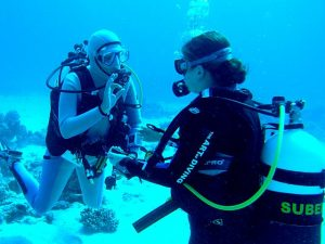 Diving courses for beginners